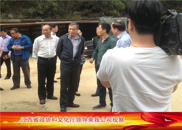 江西省政协和文化厅领导来我公司视察