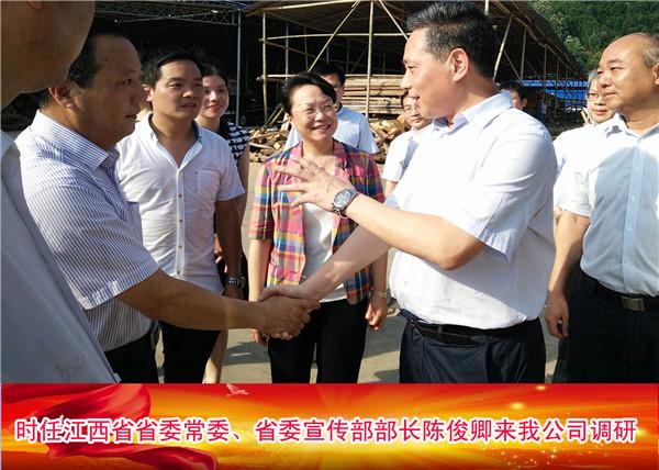 时任江西省省委常委、省委宣传部部长陈俊卿来我公司调研
