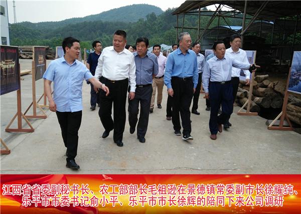 江西省省委副秘书长、农工部部长毛祖逊在景德镇常委副市长徐耀纯、乐平市委书记俞小平的陪同下来公司调研