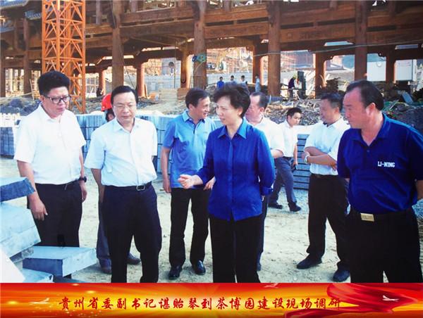 贵州省委副书记谌贻琴到茶博园建设现场调研
